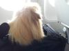 A repülőgépen