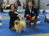 Ljubljana International Dog Show 2015 1/4