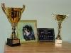 A kapott díjak